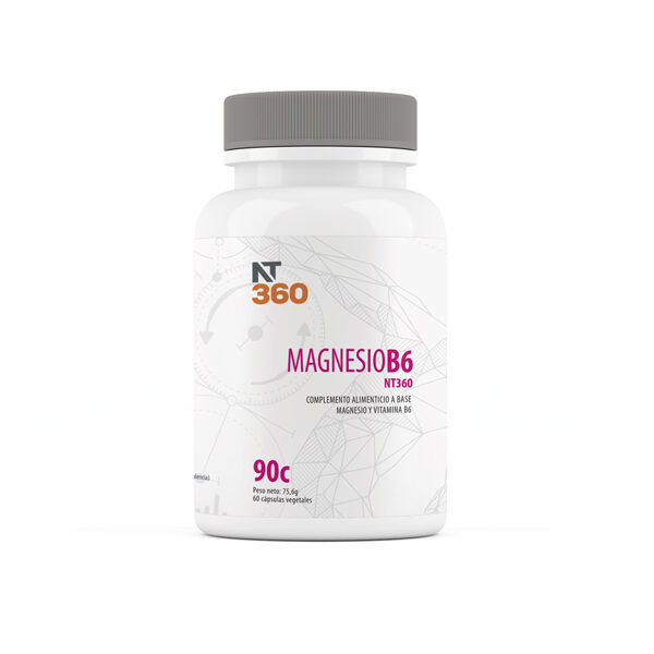 MAGNESIO B6 NT360